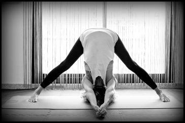 yoga lashala